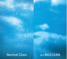 Glass with Bioclean coating vs glass without